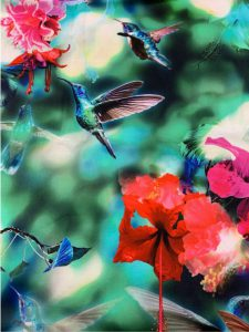 887 hummingbirds