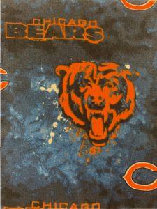 991 Bears
